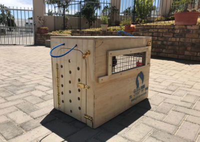 GlobalPaws-Pet-travel-crates-Gallery-03