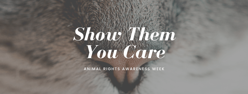 Animal Rights Awareness Week