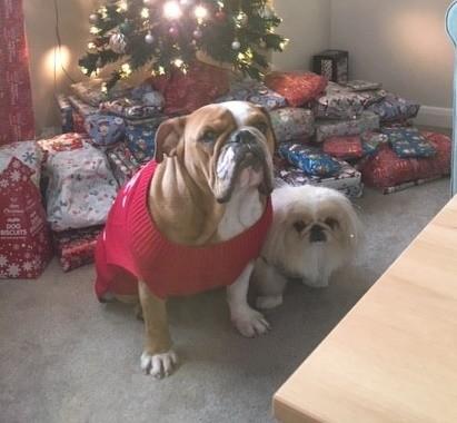 Georgie and Poppy